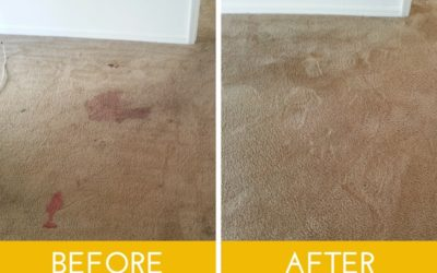 The Carpet Cleaning You've Been Searching For