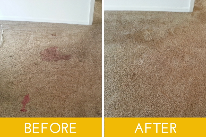Before and after using a great carpet cleaner | My Floor Restore | Lakeland, FL | If we can't restore it, you'd better refloor it!